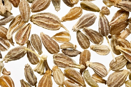 Herbal Medicine: Ajwain seed