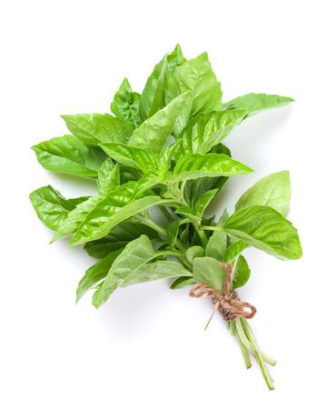 Herbal Medicine: Basil