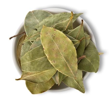 Herbal Medicine: Bay