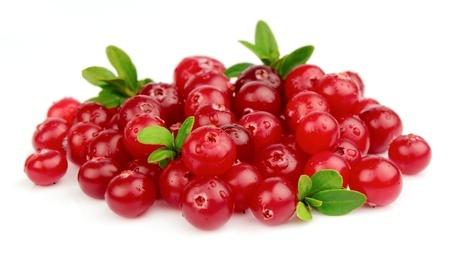 Herbal Medicine: Cranberries