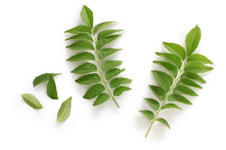 Herbal Medicine: Curry leaves