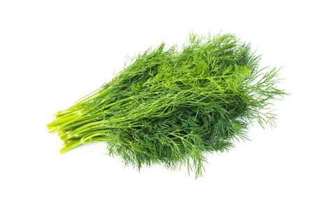 Herbal Medicine: Dill