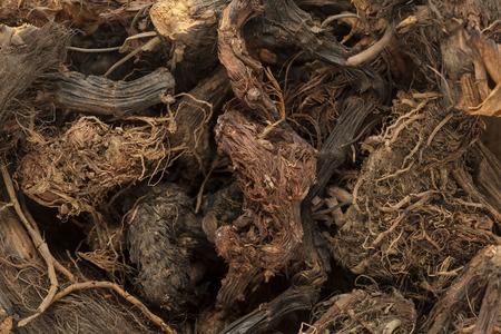 Herbal Medicine: Jatamansi