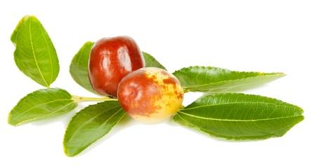 Herbal Medicine: Jujube