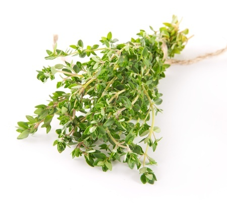 Herbal Medicine: Thyme