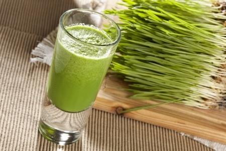 Herbal Medicine: Wheatgrass